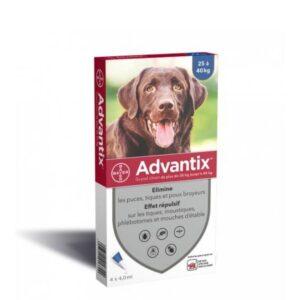 """אמפולות אדוונטיקס לכלבים גודלים במקשל 25 ק""""ג ומעלה"""