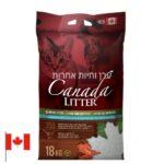 קנדה חול חתולים