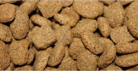 אוכל היפואלרגני לכלב