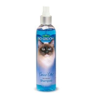שמפו לחתול