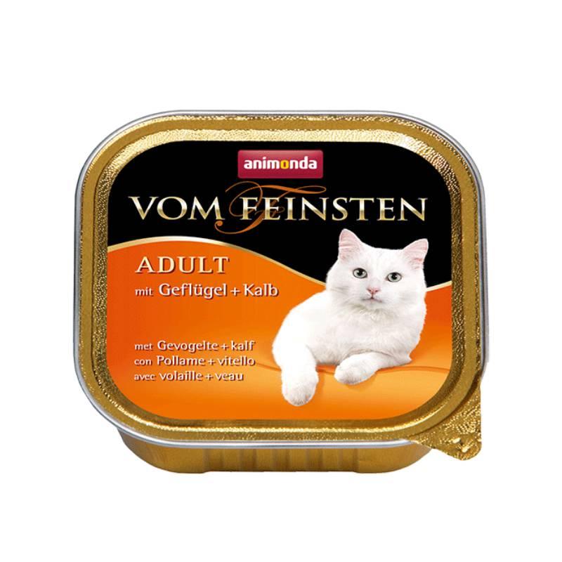 אנימונדה חתול