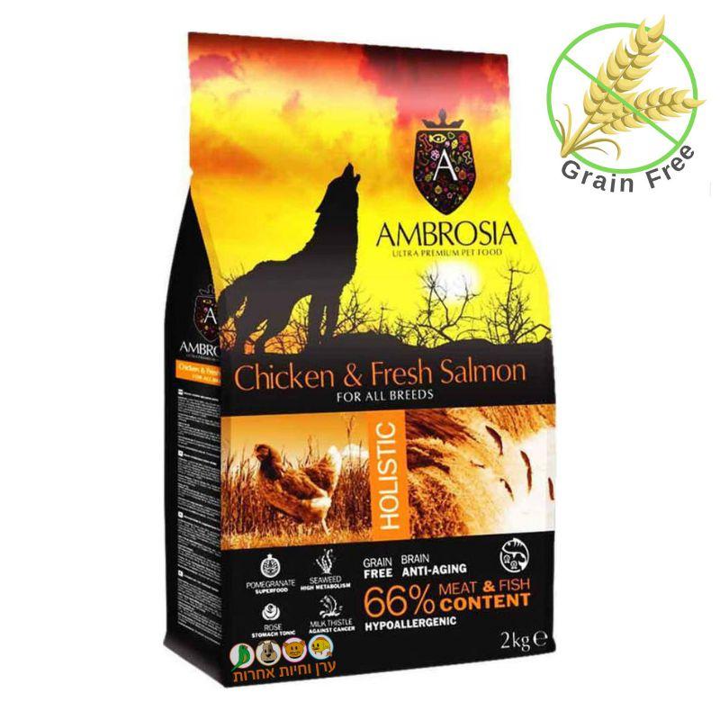 מזון לכלבים אמברוסיה