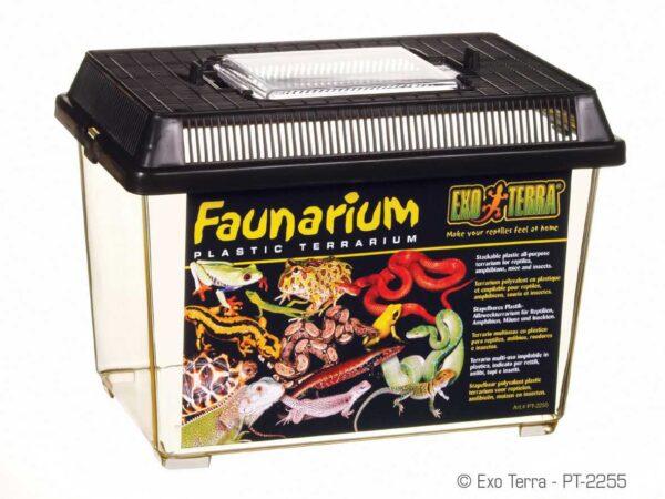 טרריום זוחלים פלסטיק