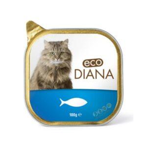 מזון רטוב לחתול