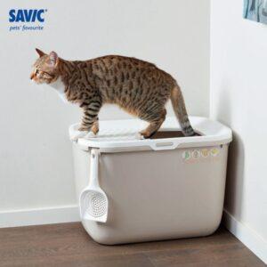 שירותים לחתול עם פתח עליון