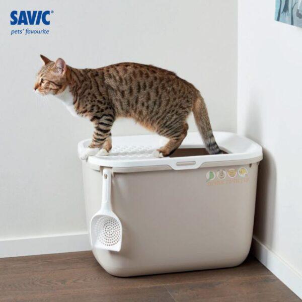 שירותים לחתולים LITTER TRAY