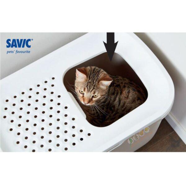 שירותים לחתול, hop in