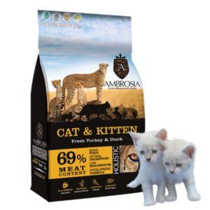 מזון לגורי חתולים, אמברוסיה