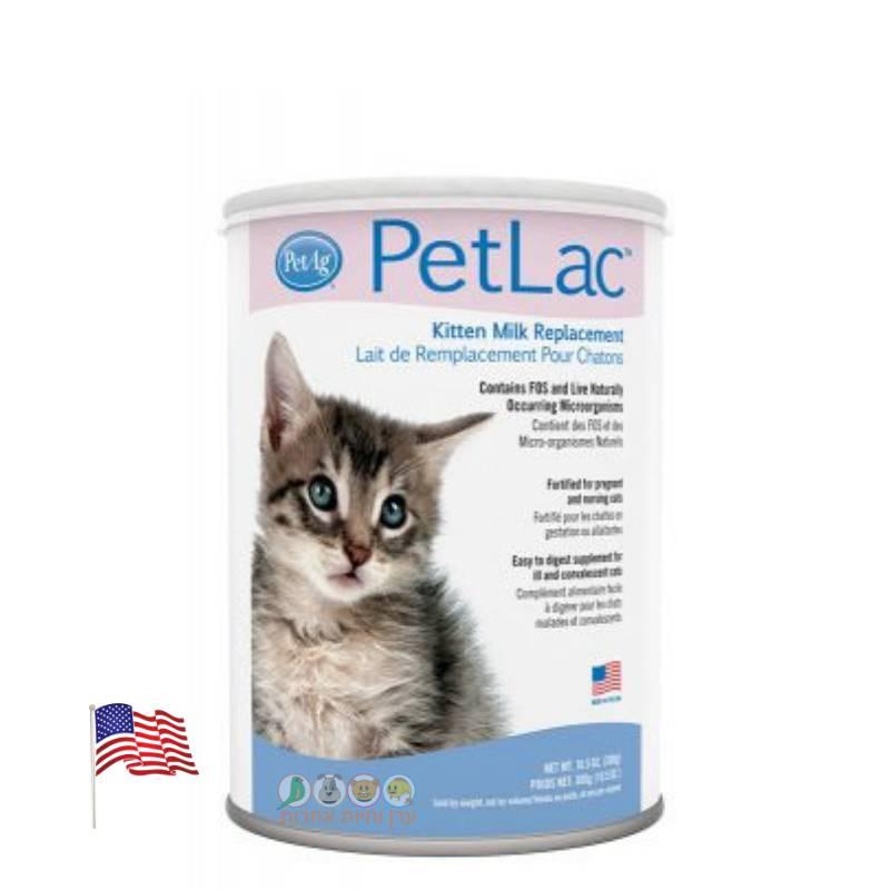 אבקת חלב לגורים של חתולים