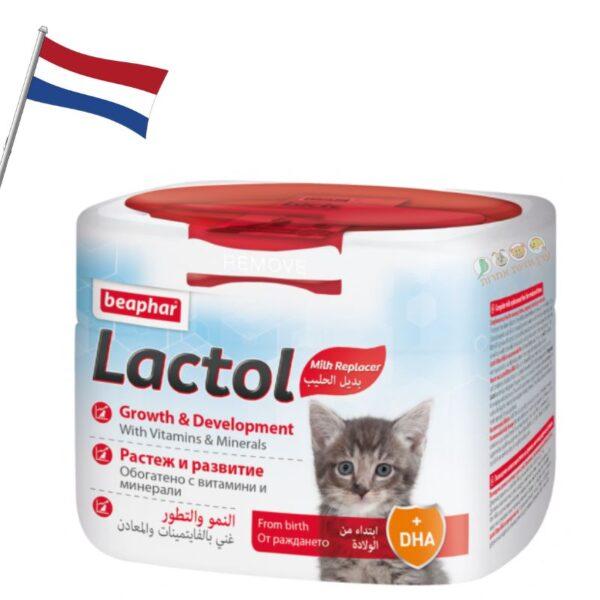 תחליף חלב אם לגורים של חתולים, חנות חיות