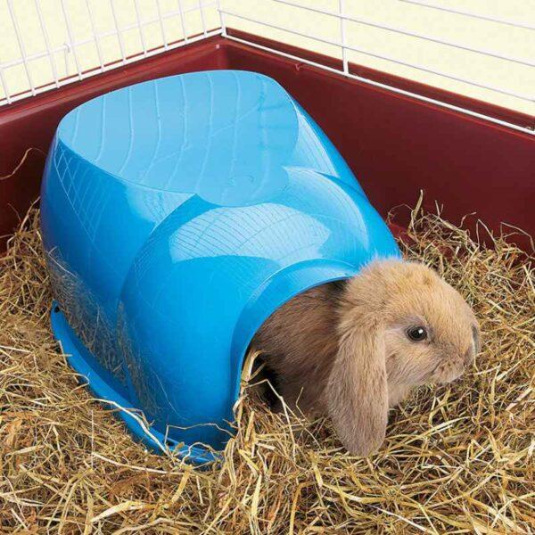 בית לארנבים