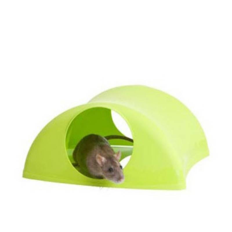 בית לשרקנים ועכברים