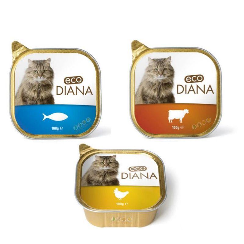 מזון רטוב פטה לחתולים