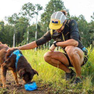 כלב שותה מים מקערה של ראפוור