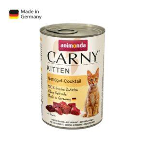 שימורים לגורי חתולים אנימונדה קרני