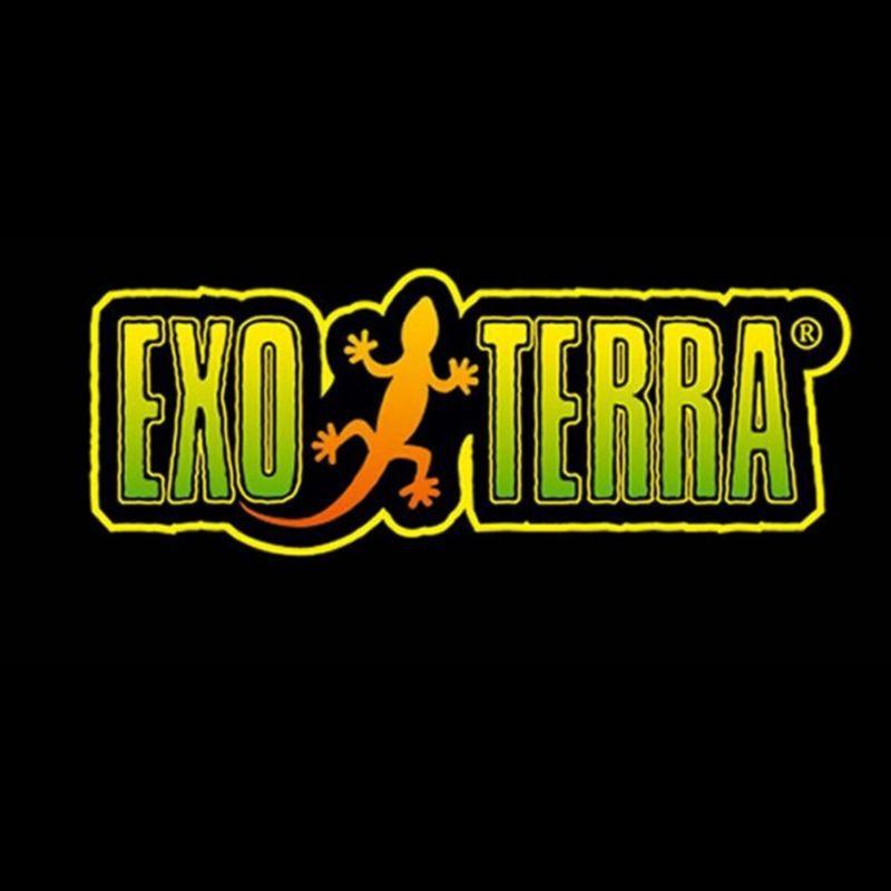 לוגו של חברת אקזוטרה