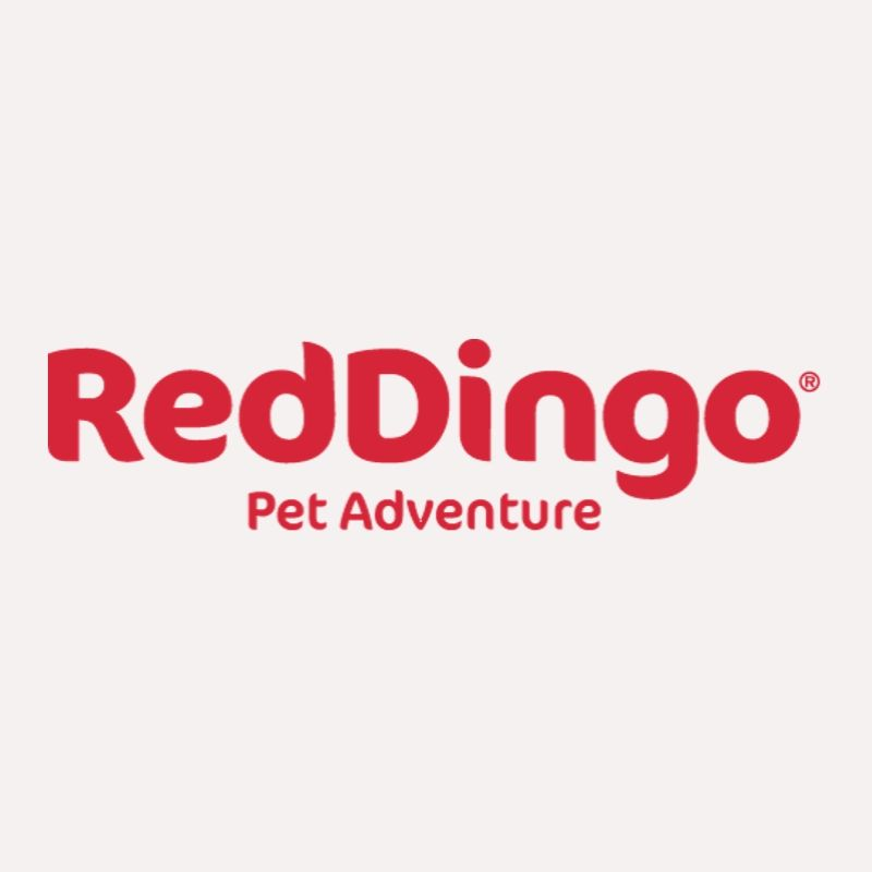 לוגו של רד דינגו