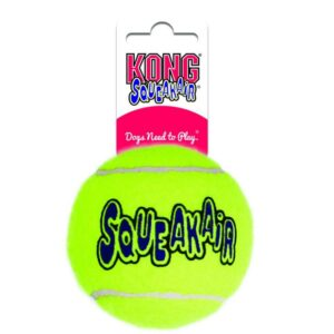 כדור משחק לכלבים של חברת קונג