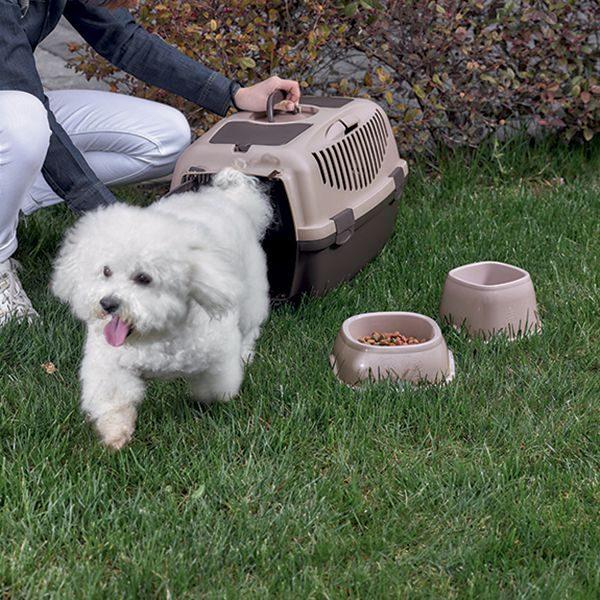 כלוב נשיאה לכלבים מגזע קטן, סטפן פלסט
