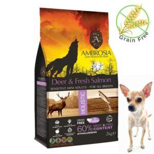 מזון ללא דגנים לכלבים בןגרים מגזע קטן של אמברוסיה