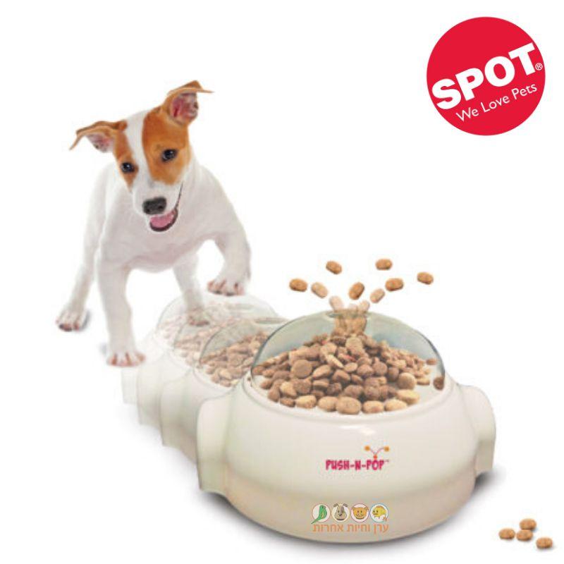 כלב משחק עם מתקן האכלה של SPOT