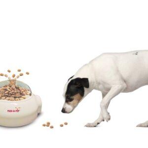 כלבי ג'ק ראסל אוכלים ממקן האכלה של SPOT