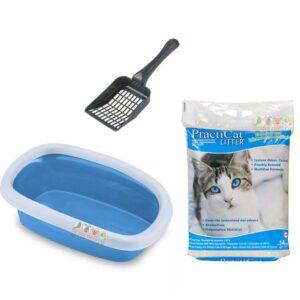 שירותים לחתולים במבצע עם חול של פרקטיקט