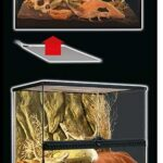 משטח חימום מודבק לטרריום זוחלים של אקזוטרה
