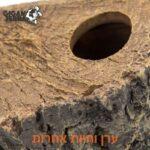 מחסה לטרריום זוחלים, דמוי עץ עם מכסה פינתי