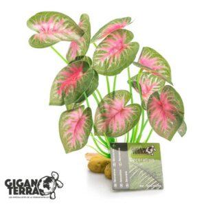 צמח מלאכותי קלדיום לפלודריום