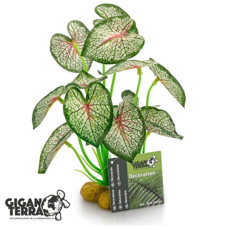 צמח מלאכותי לפלודריום