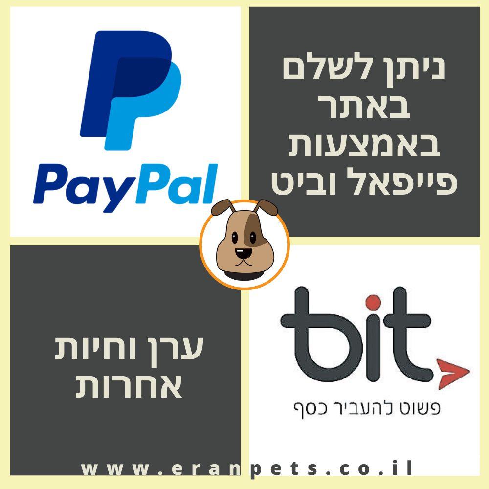 פייפאל וביט באתר של ערן וחיות אחרות