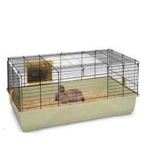 ארנב ננסי בתוך כלוב עם חציר