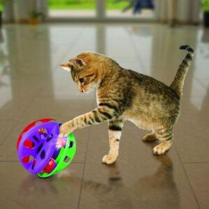 חתול משחק בצעצוע של קונג קריס קרוס