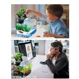 ילד מטפל בדגי אקווריום שולחני