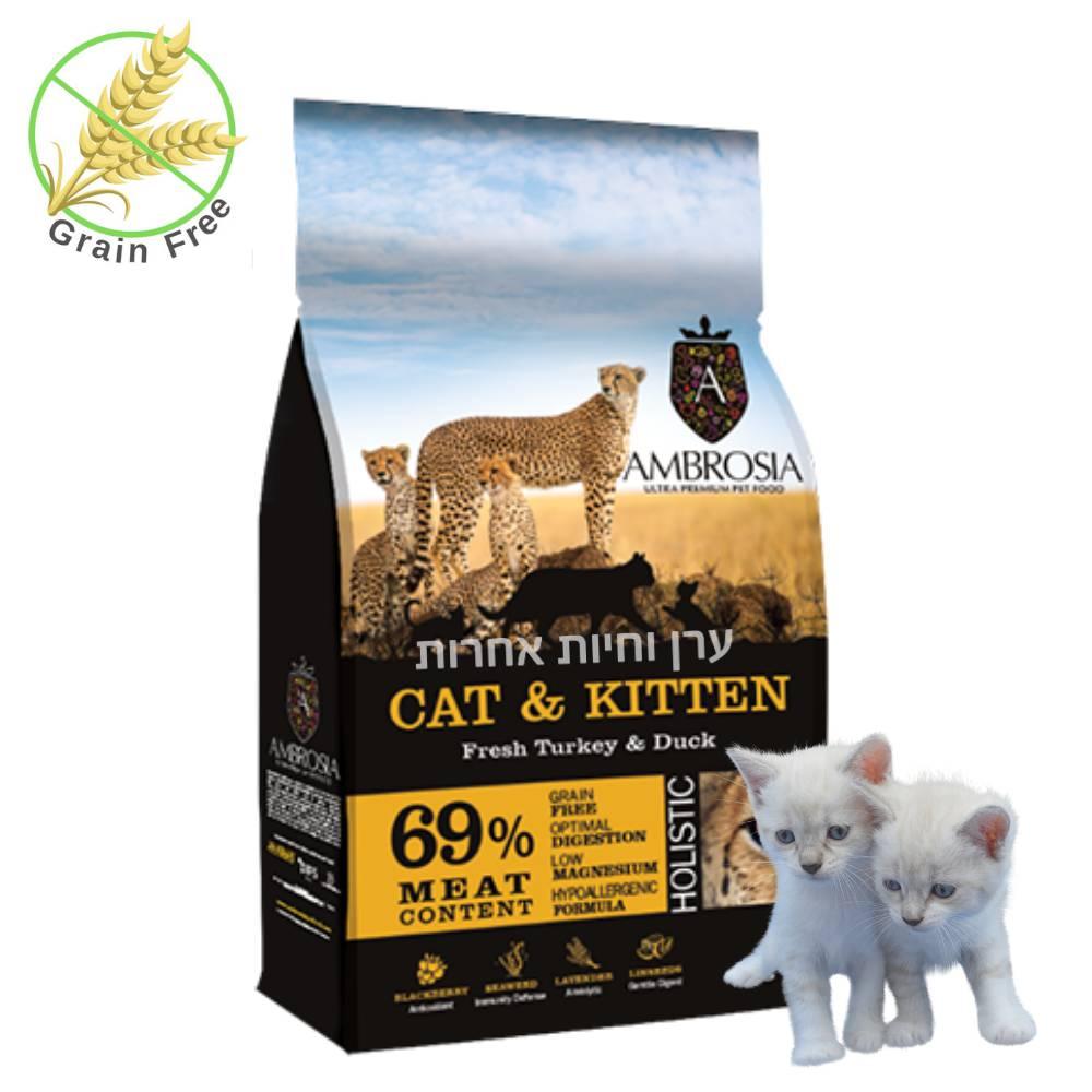 """שק מזון אמברוסיה לגורי חתולים 2 ק""""ג"""