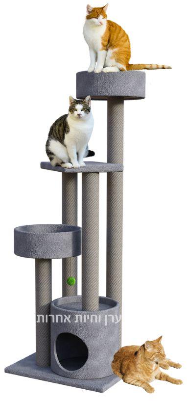 חתולים יושבים על מתקן גירוד ענק
