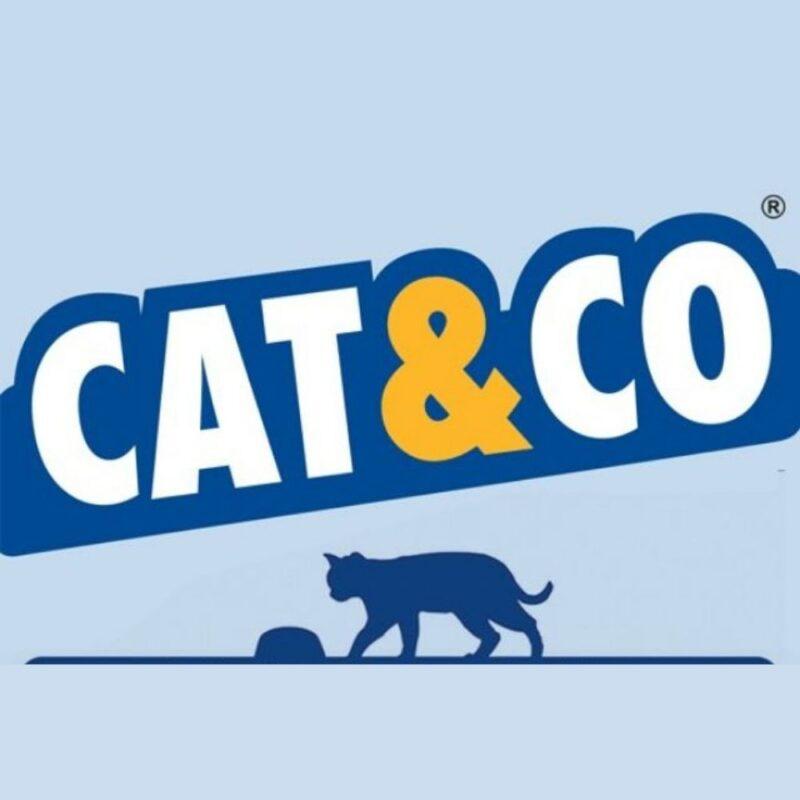 קט אנד קו מזון לחתולי חצר
