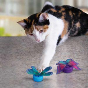 חתול משחק בצעצוע של קונג בצורת פרפר
